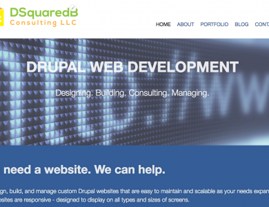 DSquaredB Consulting Website
